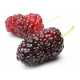 Mulberries (200g)